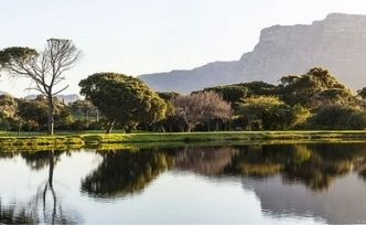 Séjour safari en Afrique du Sud: 2 idées de destination